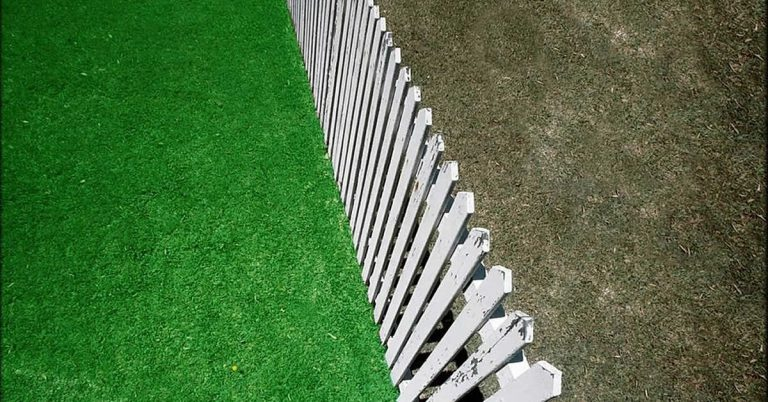 Grass is Greener Syndrome Relationship Effects