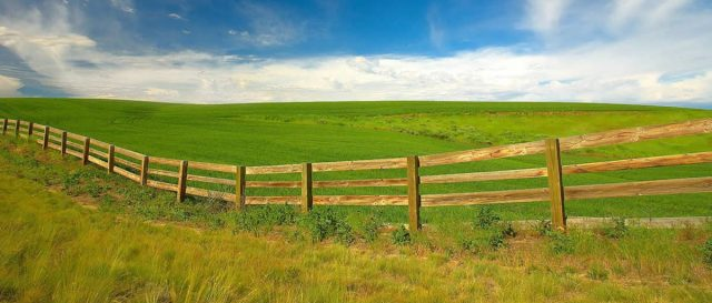 Overcome Grass is Greener Syndrome - Top 7 Ways