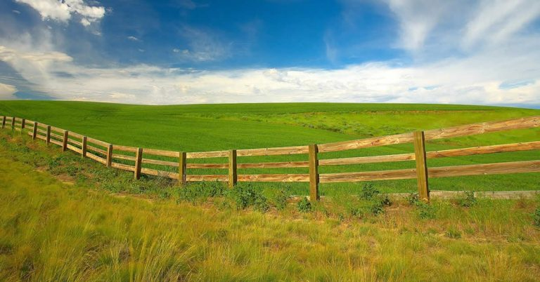 7 Ways to Overcome Grass is Greener Syndrome